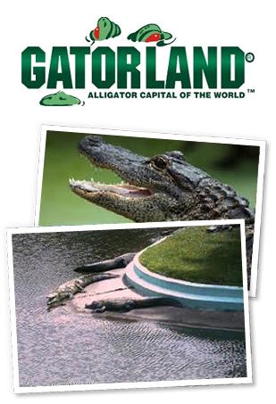 Gatorland®